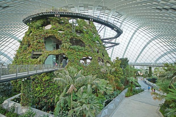 Идеи для города: Механический лес вСингапуре. Изображение № 18.