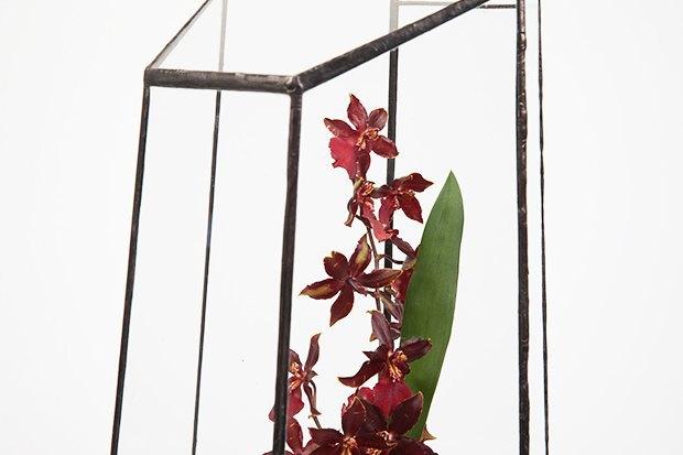Террариумы скомнатными растениями Blossom Universe. Изображение № 3.