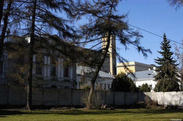 Около Пушкинского музея вырубают старинный парк. Изображение № 6.