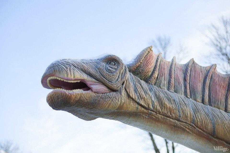 Фоторепортаж: Парк динозавров на ВВЦ. Изображение № 4.