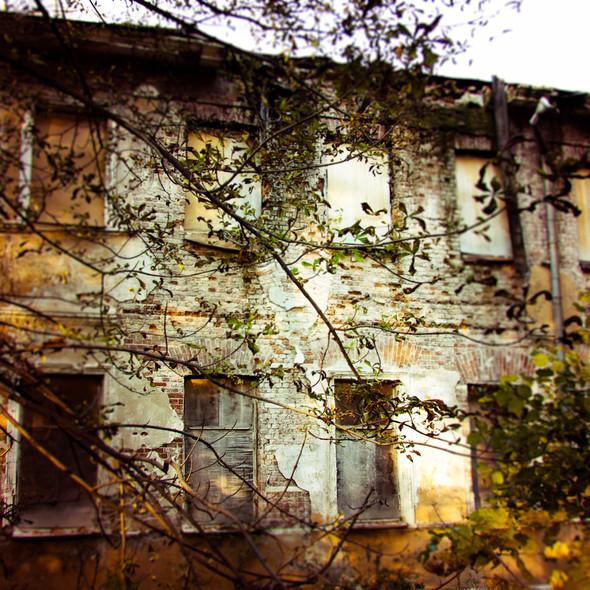 В зоне риска: Египетский павильон и Померанцева оранжерея в Кузьминках. Изображение № 21.