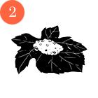 Рецепты шефов: Красный хумус, бабагануш, долма ипшеничные лепешки. Изображение № 11.