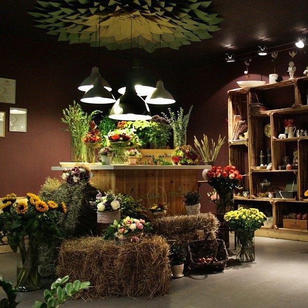 В Жуковского открылся первый цветочный магазин «Флора Point». Изображение № 1.