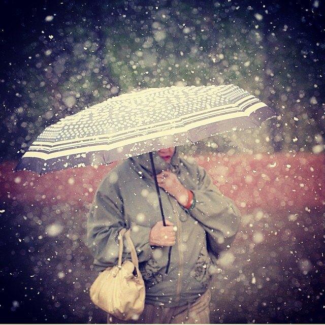 Майский снегопад вснимках Instagram. Изображение № 19.