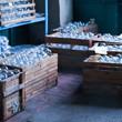Сплошное надувательство: Фабрика елочных игрушек изнутри. Изображение № 3.