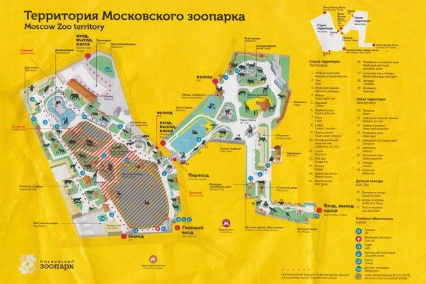 В московском зоопарке начинается масштабная реконструкция. Изображение № 1.