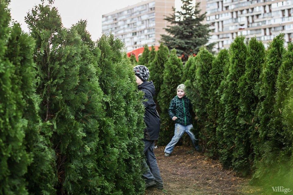 Фото дня: Парк «Буратино» в Ново-Переделкине. Изображение № 12.