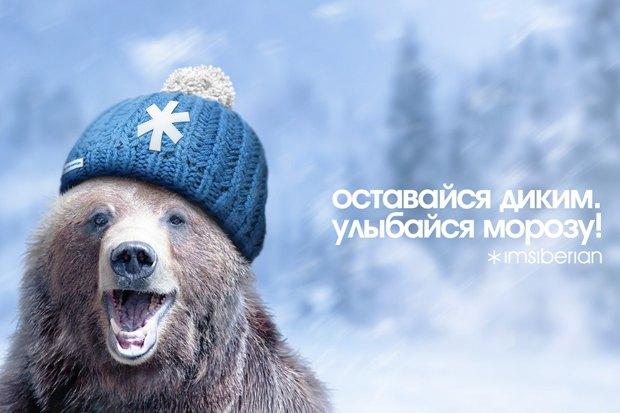 Как создать бренд Сибири . Изображение № 7.