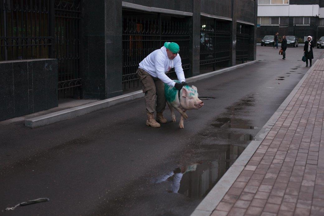 Как паркмен и боров пикетировали московский департамент транспорта. Изображение № 5.