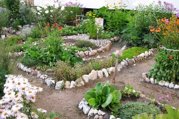 Личный опыт: Как разбить сад под окнами. Изображение № 3.