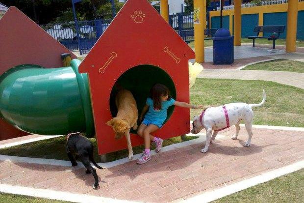 Иностранный опыт: Как устроены площадки для выгула собак в 5 городах мира. Изображение № 19.