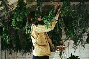 «Московский автосалон», Одри Хепбёрн вкино, «Зелёная неделя» впарке Горького иещё 16 событий. Изображение № 23.