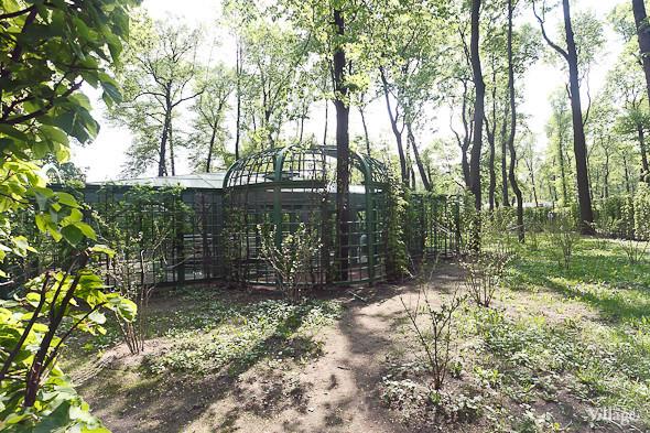 Фоторепортаж: Летний сад после реставрации. Изображение № 66.