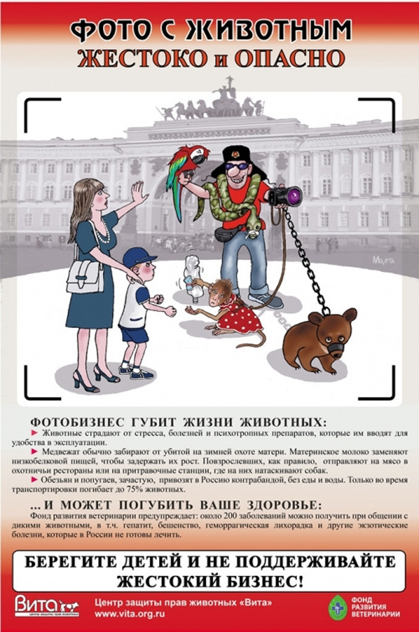 Социальная реклама Российского центра защиты прав животных «Вита». Изображение № 1.