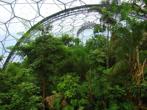 Дизайн от природы: Британские тропики и «цветочная» архитектура. Изображение № 11.