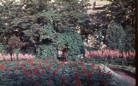 Сад Травникова в 60-е годы. Изображение № 4.