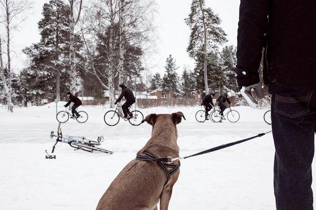 Консультант мэрии финского Оулу — о зимнем велодвижении. Изображение № 9.