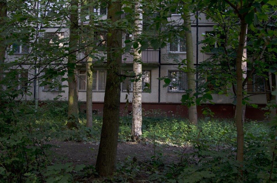 На районе: Московский глазами Роберты Корреджиа. Изображение № 13.