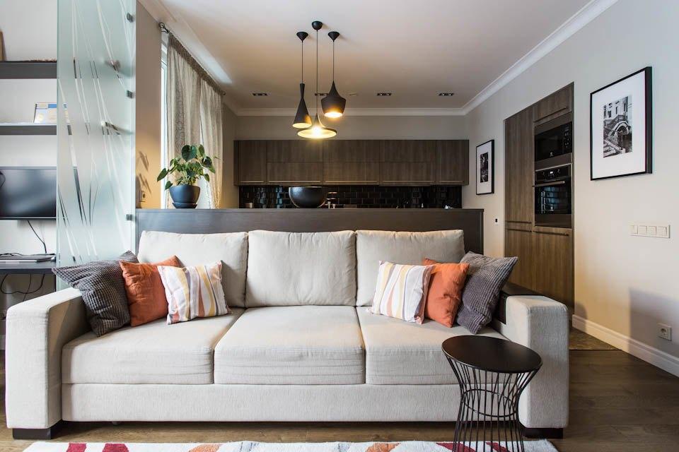 Двухкомнатная квартира вЦарицыне для молодой семьи. Изображение № 3.