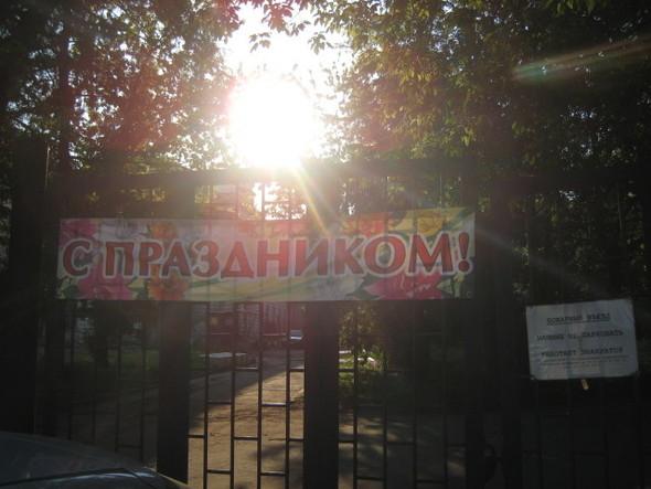 Около Пушкинского музея вырубают старинный парк. Изображение № 3.