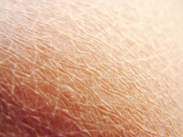 Человеческая кожа и ее способность к восстановлению стала одним из примеров для подражания. Изображение № 20.