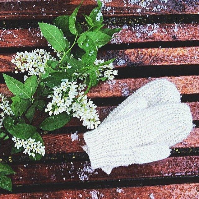 Майский снегопад вснимках Instagram. Изображение № 15.