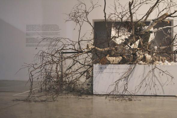 Риторический опрос: Посетители «Гаража» о современном искусстве. Изображение № 2.