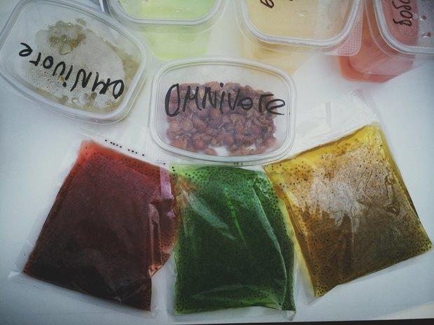 Трансляция Omnivore: Первый день мастер-классов иужины. Изображение № 79.