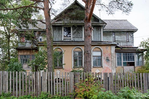 Дом на дереве: Жители Лахты за месяц до строительства небоскреба. Изображение № 33.