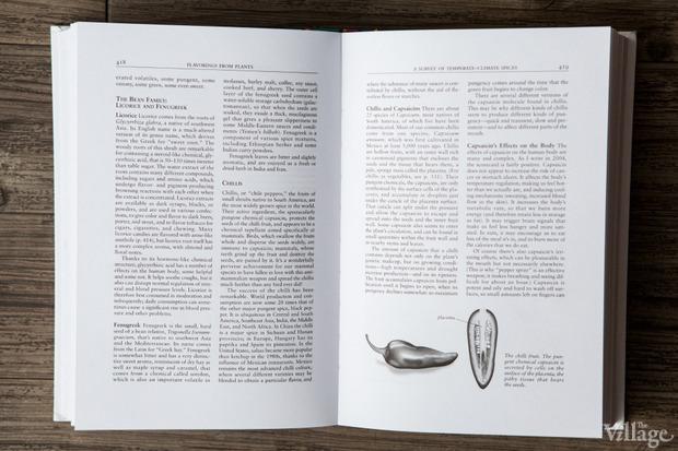 Кулинарное чтиво: Ресторатор Екатерина Дроздова о 10 книгах. Изображение № 6.