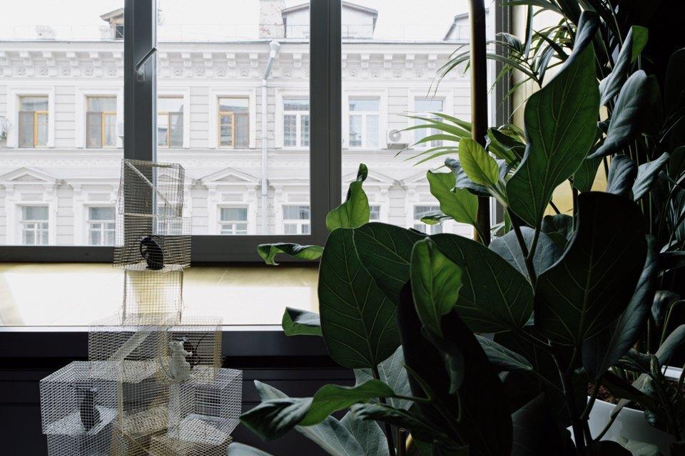Офис компании vconfessionagency. Изображение № 29.