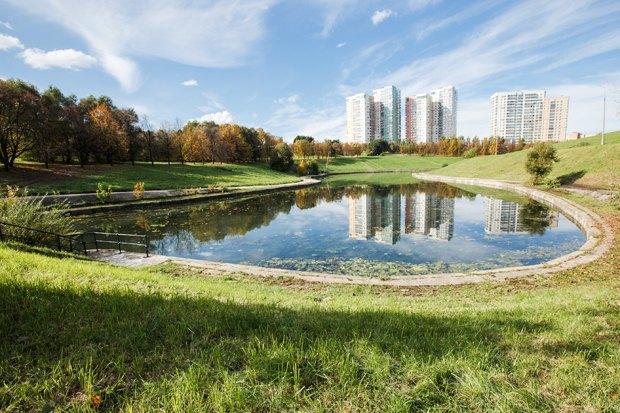 Чего хочет Москва: Четыре районных парка. Изображение № 33.