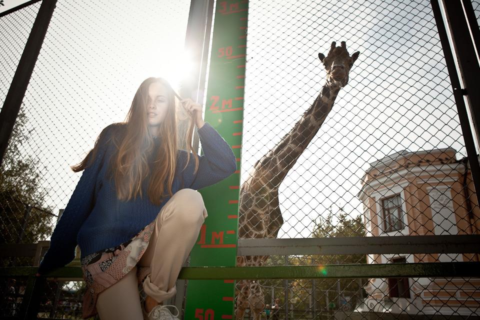 Cъёмка: Осень в зоопарке. Изображение №1.