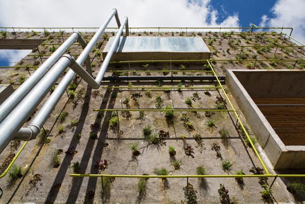 Дизайн от природы: Тропическая архитектура Бразилии. Изображение № 15.