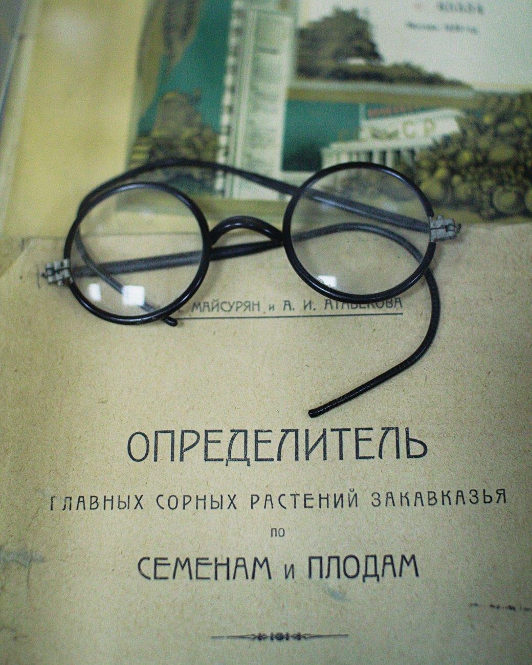Почему отбирают земли уТимирязевской академии. Изображение № 19.