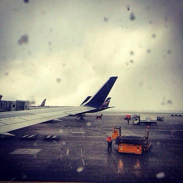 Майский снегопад вснимках Instagram. Изображение № 17.