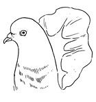 Рецепты шефов: Грудки голубя с орехами кешью и полентой. Изображение №10.