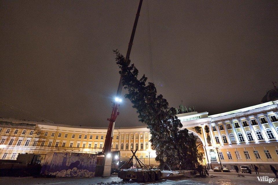 Фоторепортаж: Как устанавливали главную петербургскую ёлку. Изображение № 30.