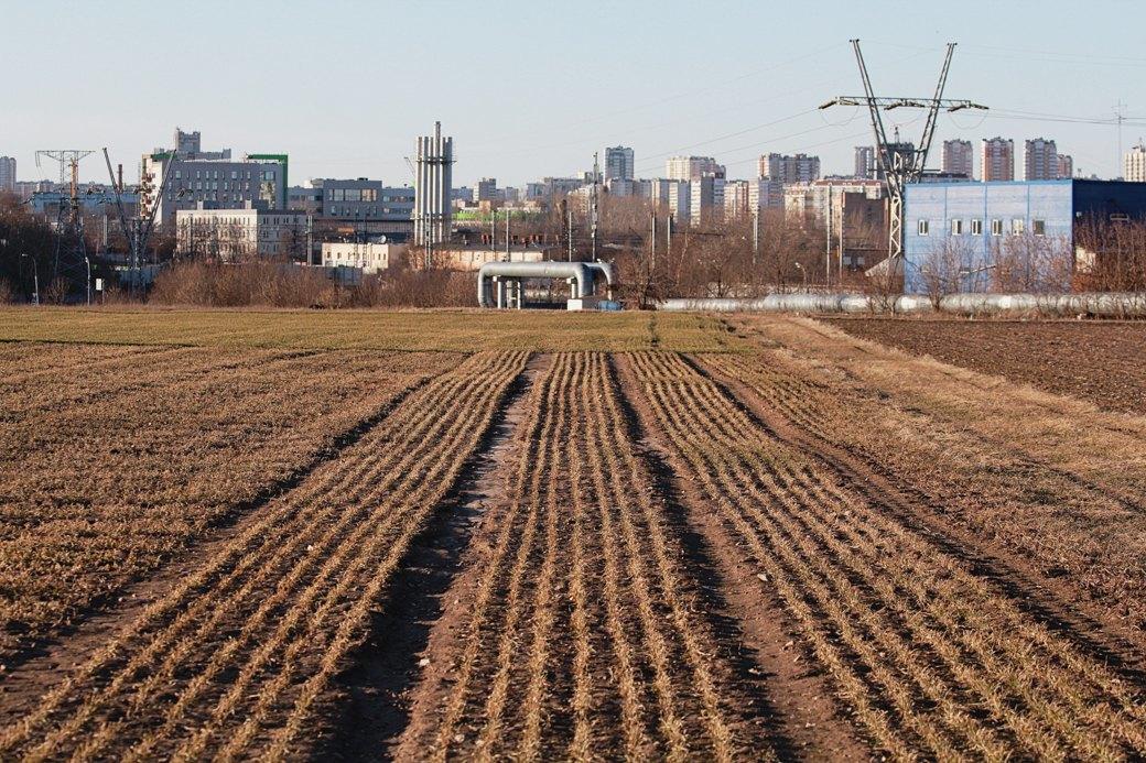 Почему отбирают земли уТимирязевской академии. Изображение № 22.