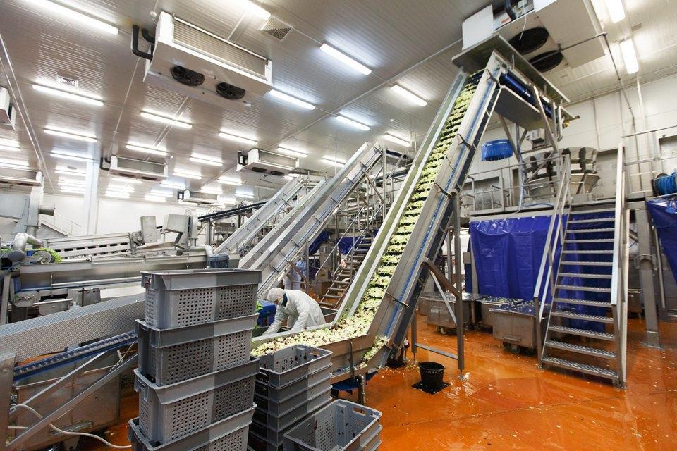Производственный процесс: Как делают салаты для McDonald's. Изображение № 20.