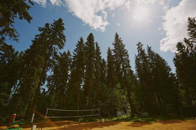 Под Петербургом откроется летний проект Forest Camp . Изображение № 2.