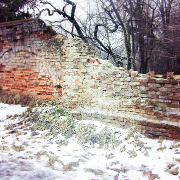 В зоне риска: Усадьба Гребнево. Изображение № 29.