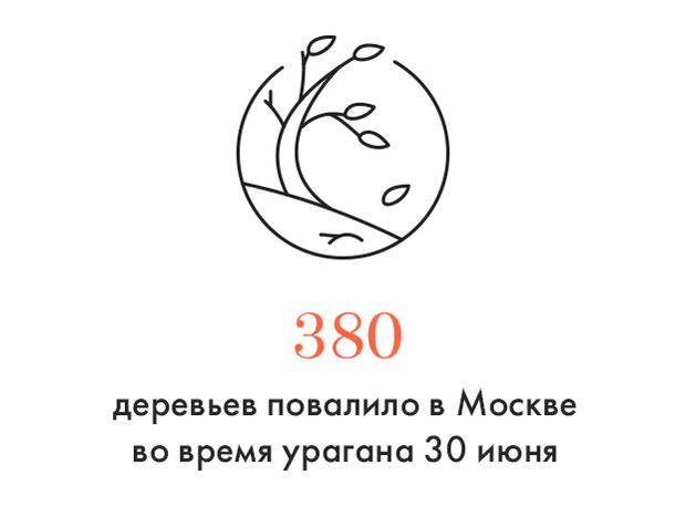 Цифра дня: Последствия урагана в Москве. Изображение №1.