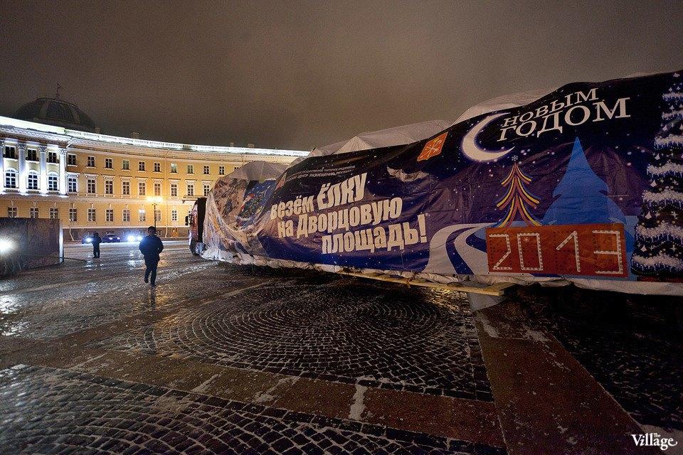 Фоторепортаж: Как устанавливали главную петербургскую ёлку. Изображение № 3.