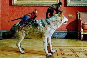 Moscow Design Week, цирк огромных зверей, Джиллиан Андерсон втеатре иещё 16событий. Изображение № 15.