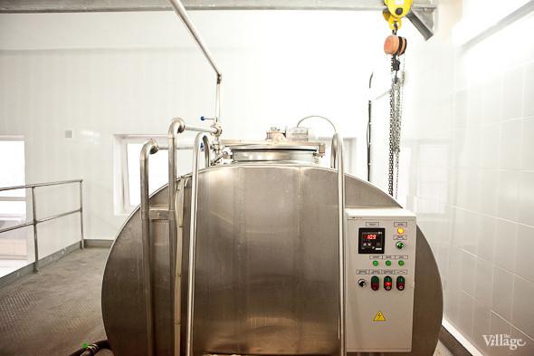 Репортаж: Как делают молочные продукты в «Лосево». Изображение № 44.
