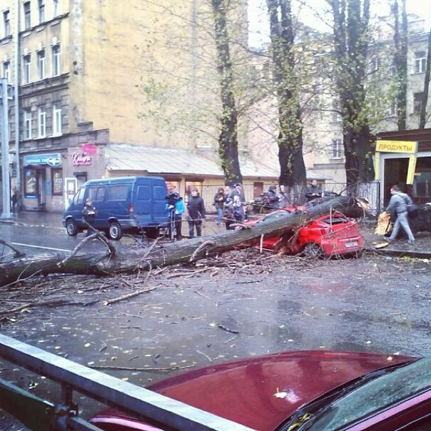 Фото дня: Шторм «Святой Иуда» в Петербурге. Изображение №17.