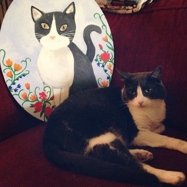 Музейные коты вснимках Instagram. Изображение № 13.