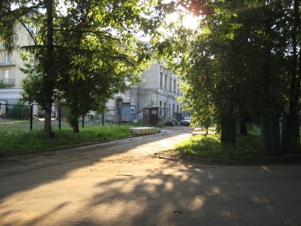 Около Пушкинского музея вырубают старинный парк. Изображение № 2.
