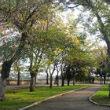 Московские парки оборудуют спортивными площадками с тренажёрами. Изображение № 1.